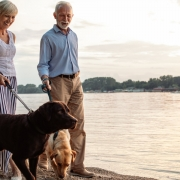 How much money you need to retire at 65 and live on investment income alone till 90
