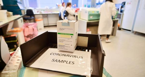 Daily Crunch: FDA approves speedier coronavirus test